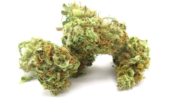 Afternoon Delight Strain Medical