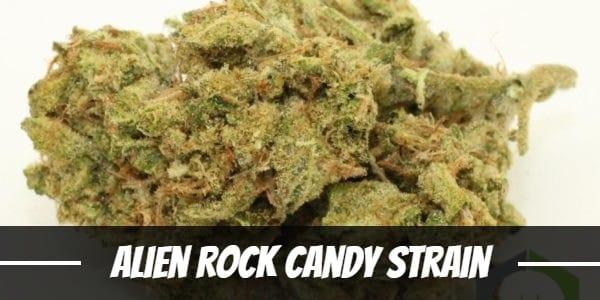 Alien Rock Candy Strain