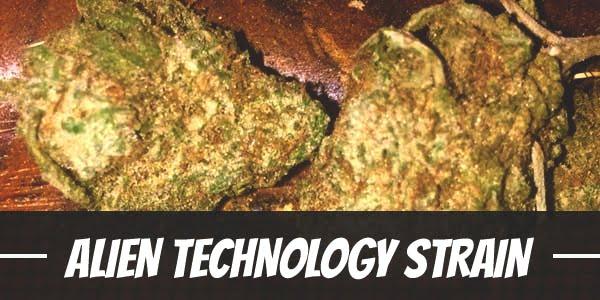 Alien Technology Strain