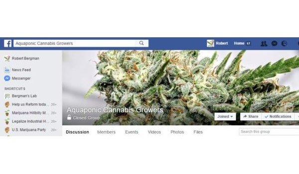 Aquaponic Cannabis Growers Facebook Page