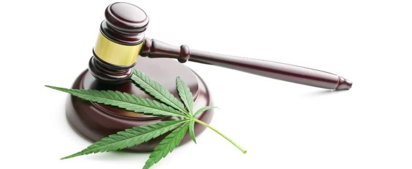 Australian marijuana laws