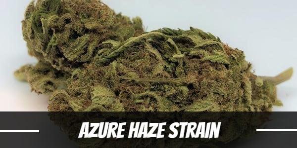 Azure Haze Strain