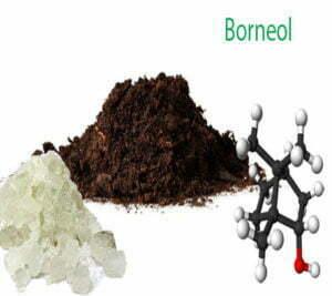 Borneol in cannabis
