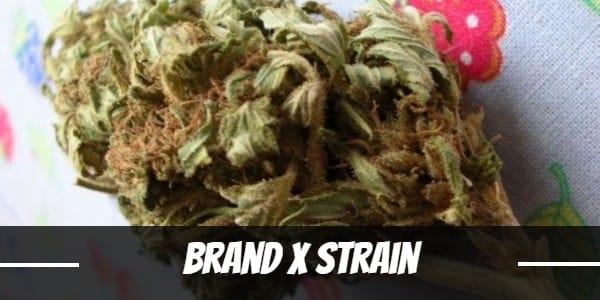 Brand X Strain