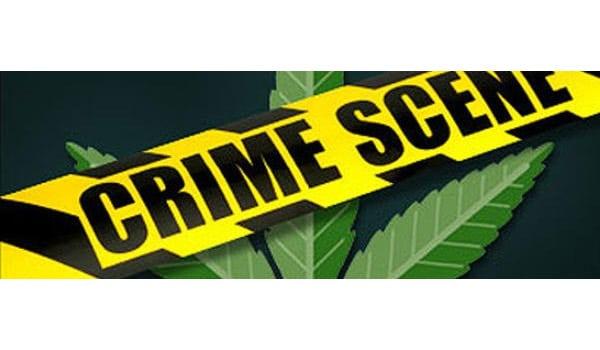 Breaking Marijuana Law California
