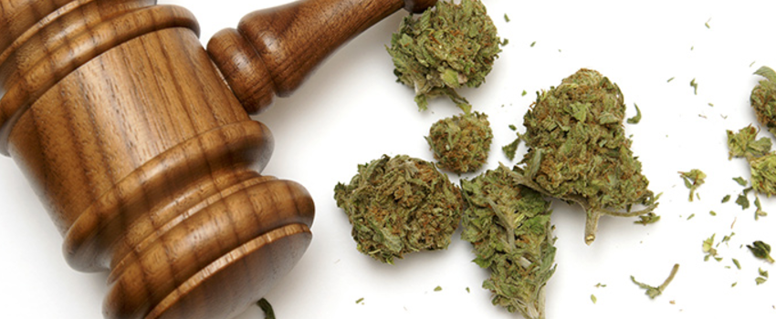 breaking marijuana laws in new york city