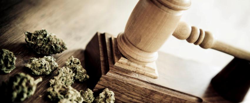 Breaking_Marijuana_Laws