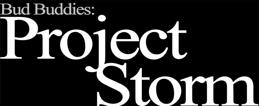 Bud Buddies: Project Storm