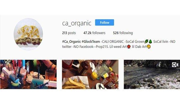 CA Organic