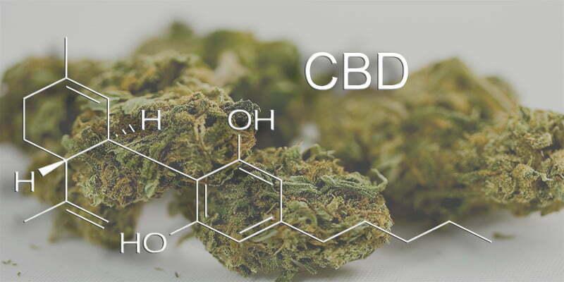 CBD Cannabidiol in medical cannabis