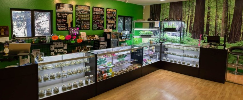 Cannabis storefront in California