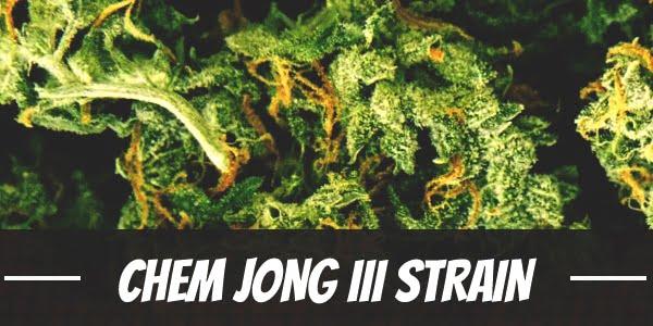 Chem Jong III Strain