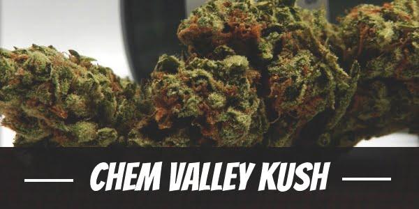 Chem Valley Kush