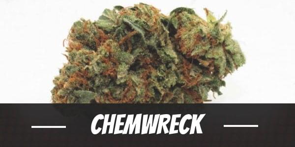 ChemWreck