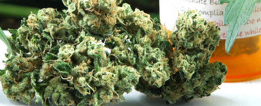 Chemdawg_91Adverse_Reaction