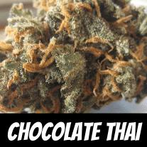 Chocolate Thai Strain