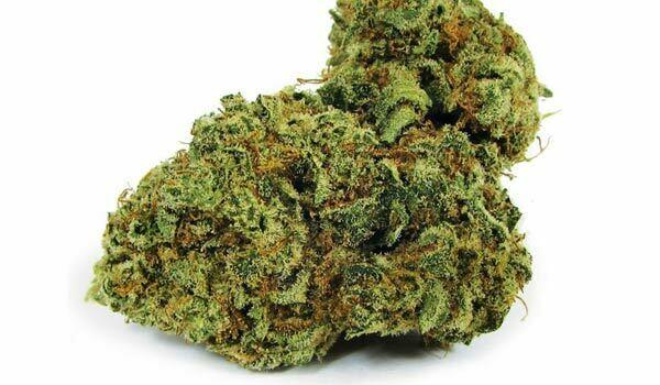 Citrus Sap Strain Medical