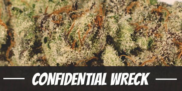 Confidential Wreck