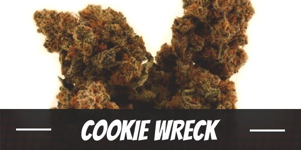 Cookie Wreck