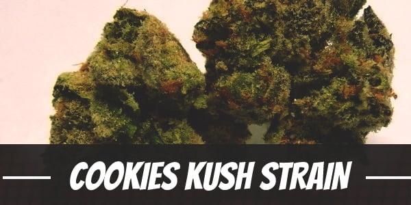Cookies Kush Strain