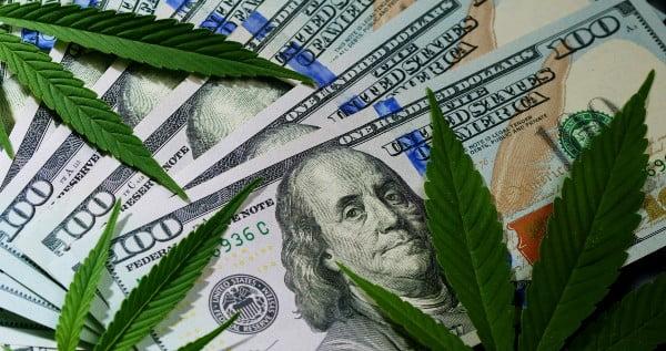 Costs and Revenues of Growing Marijuana