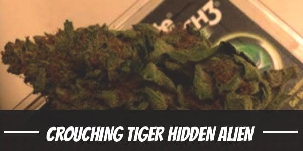Crouching Tiger Hidden Alien