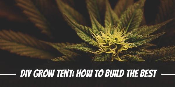 DIY Grow Tent How To Build The Best Grow Tent