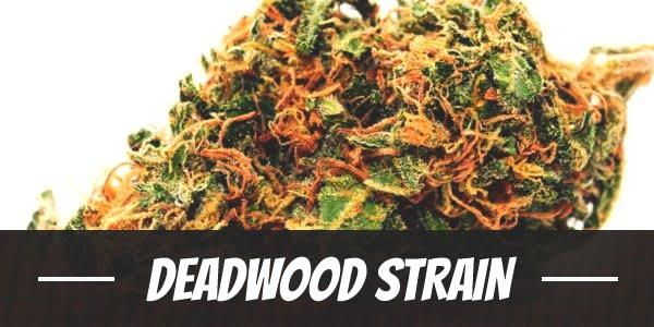 Deadwood Strain