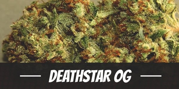 Deathstar OG
