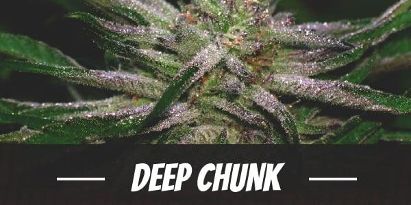 Deep Chunk