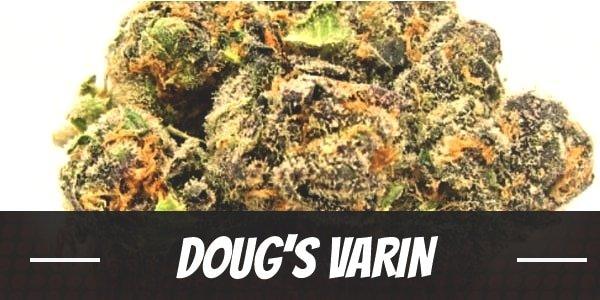 Doug's Varin