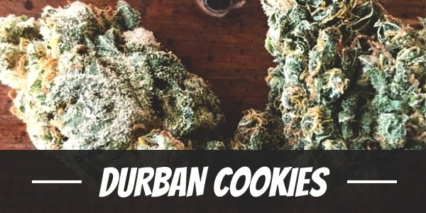 Durban Cookies