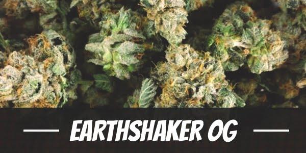 Earthshaker OG