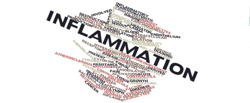 Endocannabinoids Improve Inflammation
