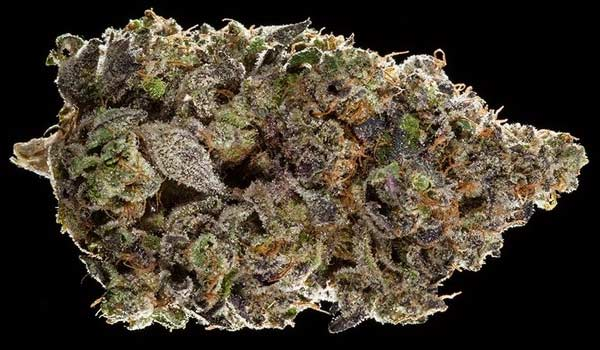 Fifth Element Strain Effects
