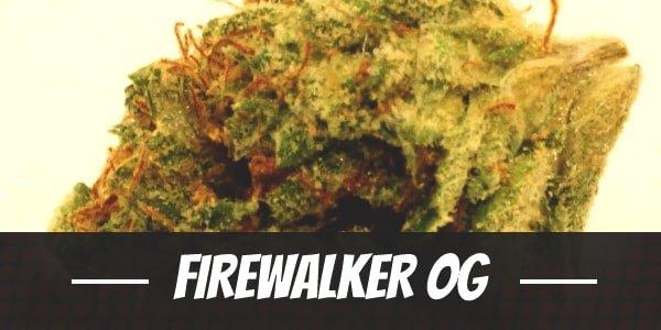 Firewalker OG