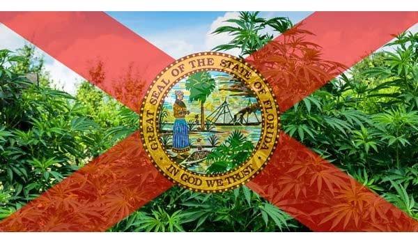 Florida official seal with marijuana plants