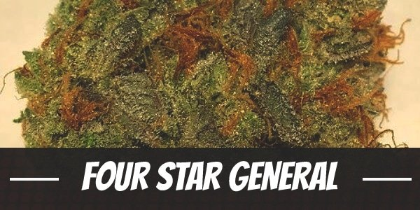 Four Star General