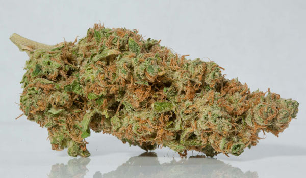 Fruity Peebles Strain Medical