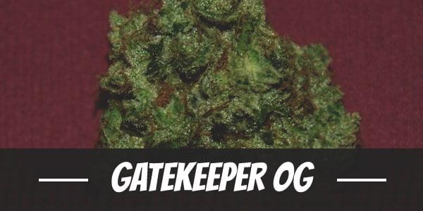 Gatekeeper OG