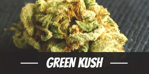 Green Kush
