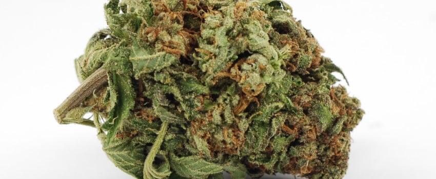 Green Kush Medical