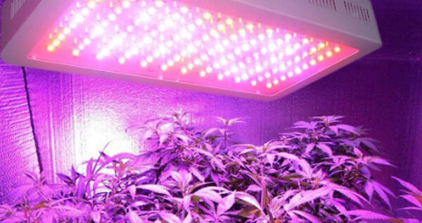 The advantages and disadvantages of using LED lights