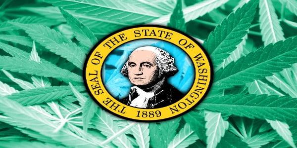 Growing Weed in Washington