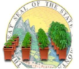 Growing in Montana
