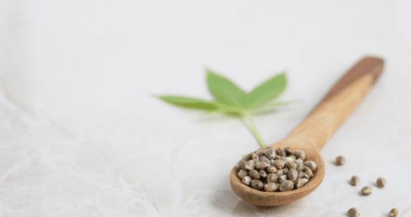 High-Quality-Marijuana-seeds