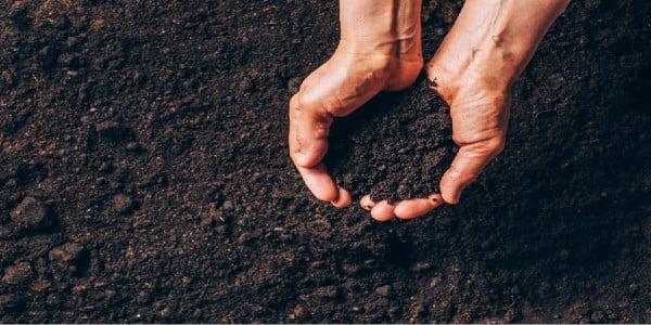 High-quality soil