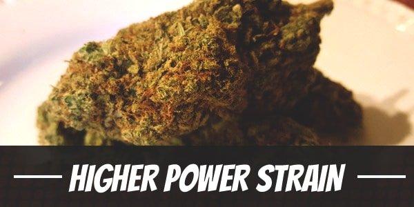 Higher Power Strain