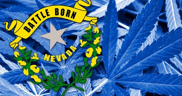 How To Become A Trimmer Or Budtender In Nevada