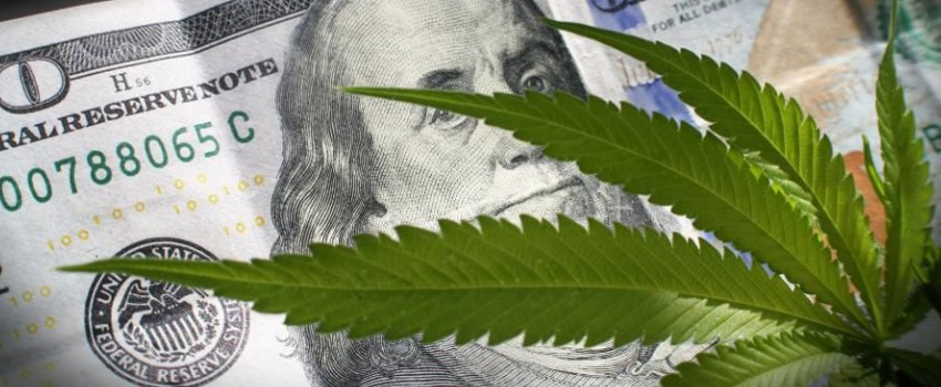 How much money is there in the Connecticut marijuana industry